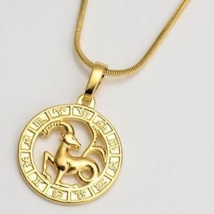Jewelry - Gold Filled Horoscope Pendant Capricorn Necklace